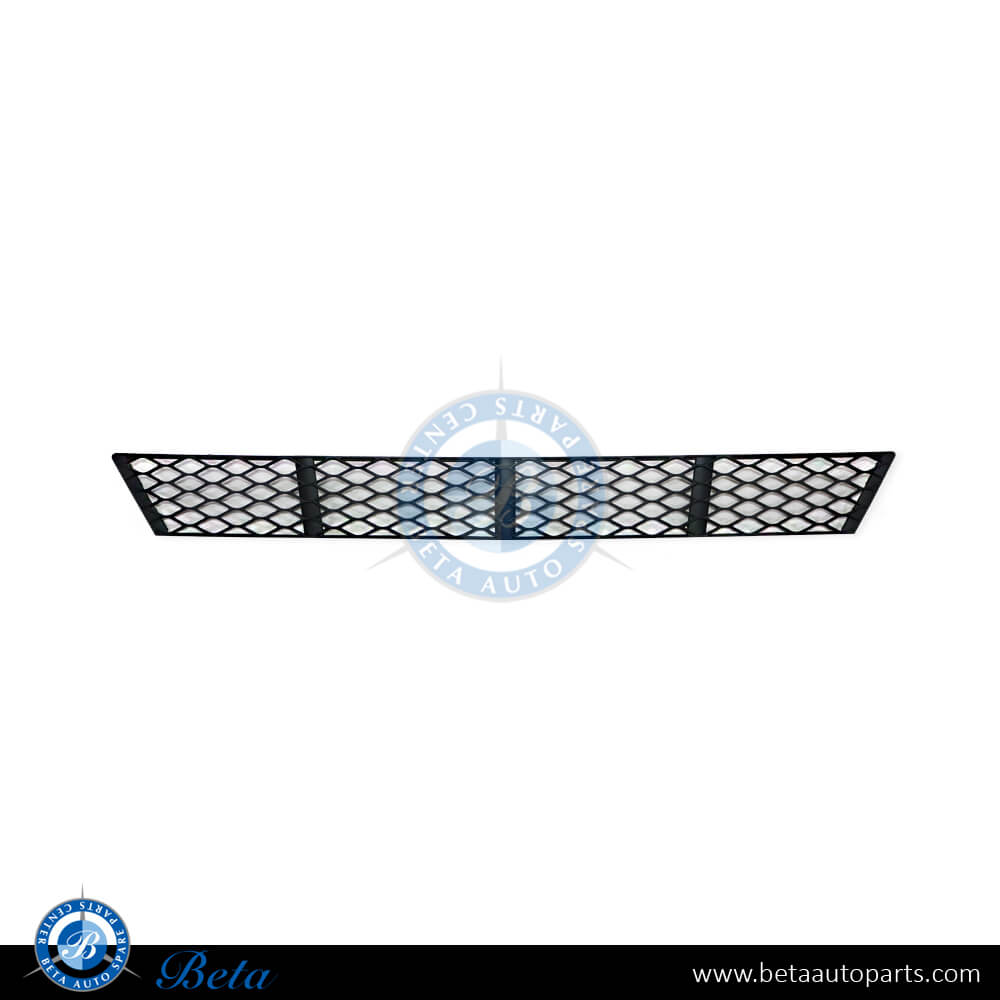 Mercedes E-Class W211 (2006-2009), Front bumper lower grille moulding (center), Taiwan, 2118850122